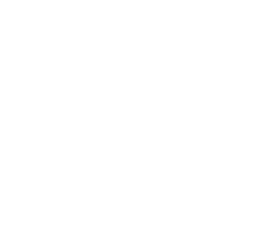 zmc-light-logo